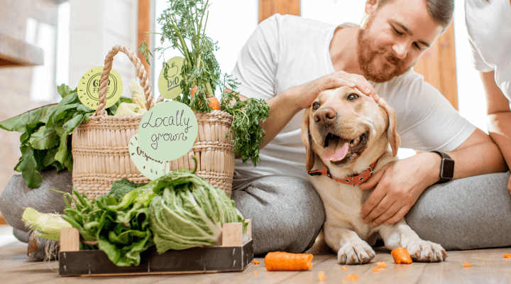 Nutrition: Just Food For Dogs